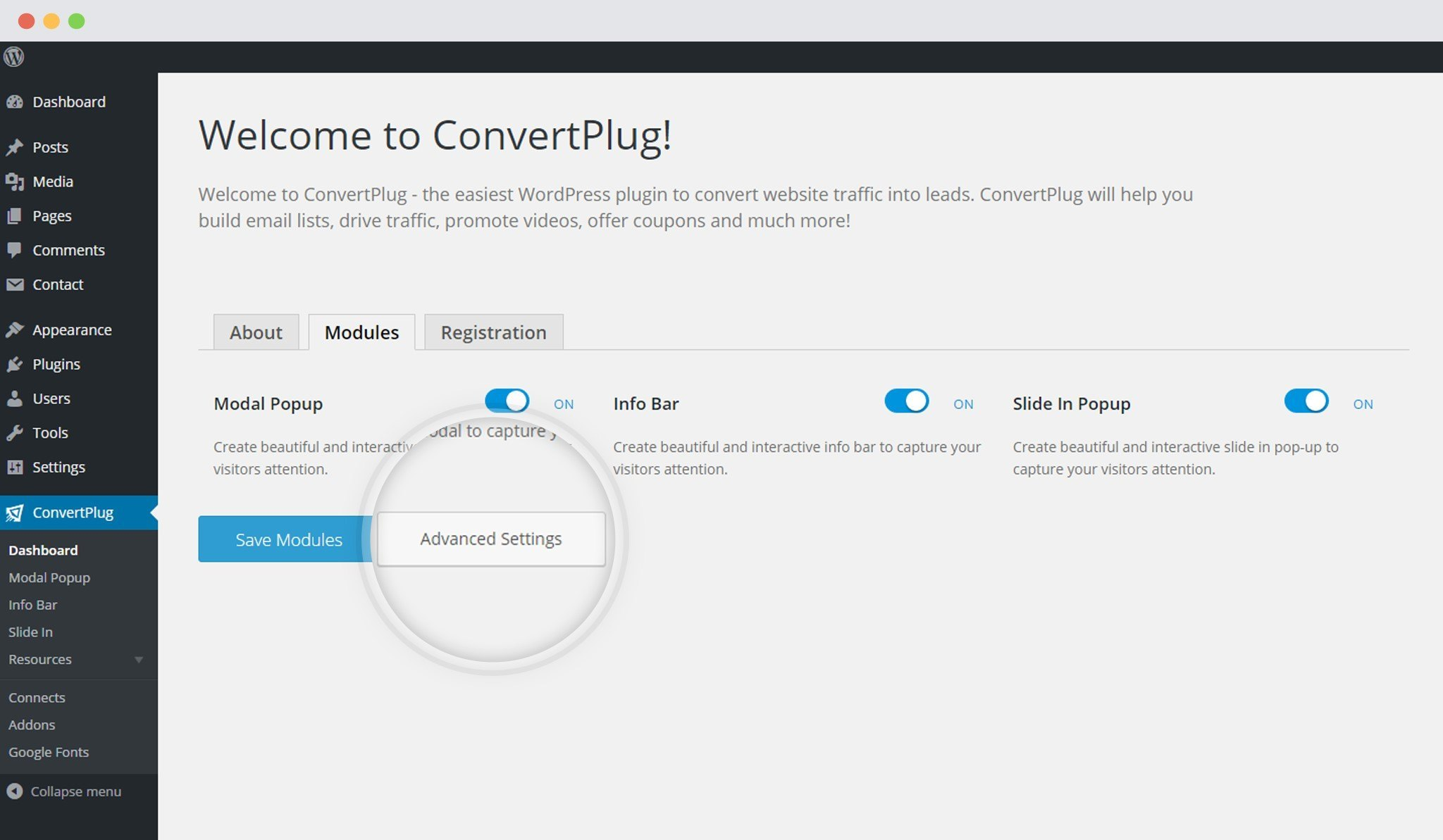 Advamced settings in ConvertPlug
