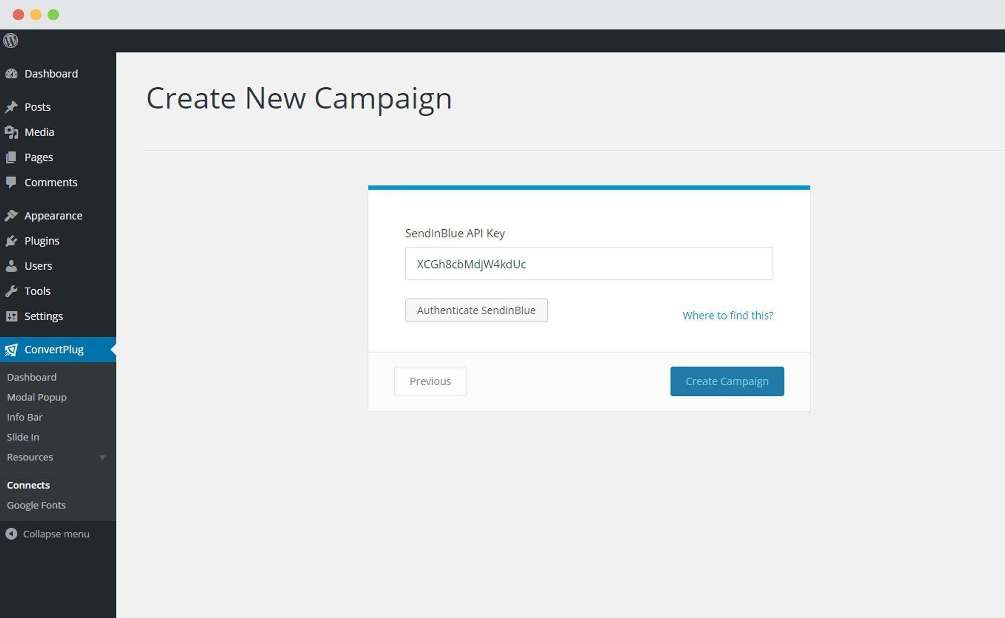 SendinBlue API Key pasted in ConvertPlug