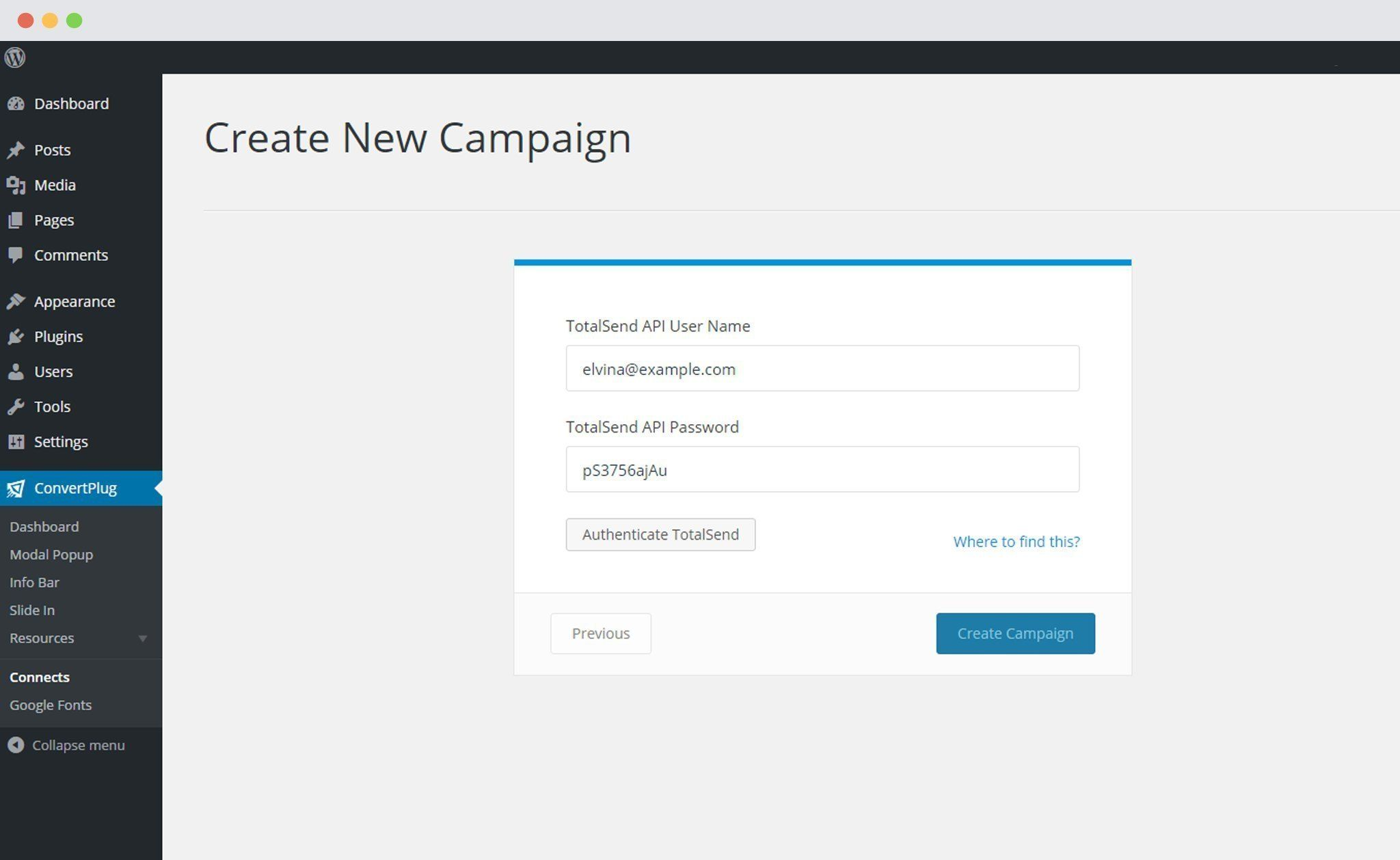 Paste TotalSend API in Connects interface of ConvertPlus